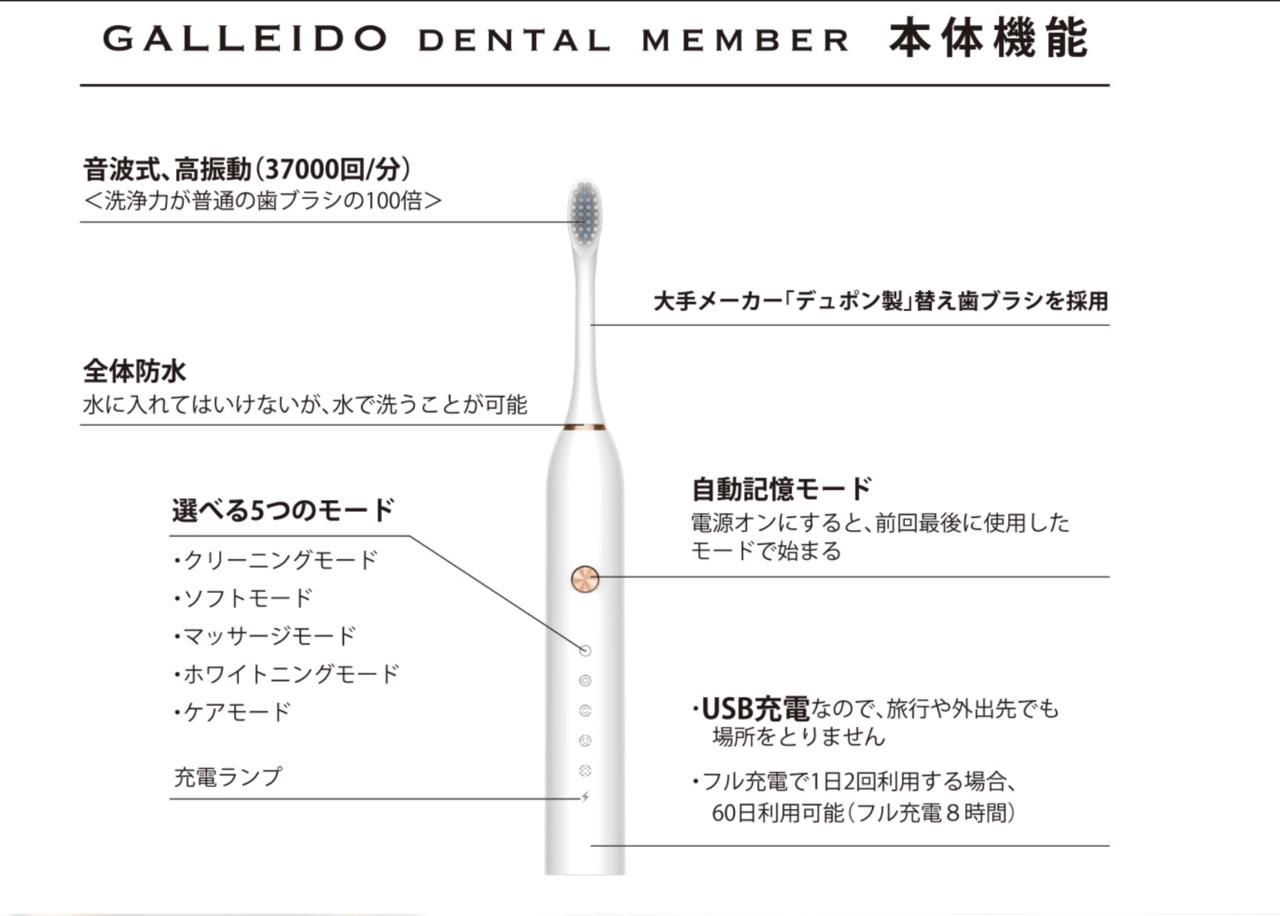 Galleid_電動歯ブラシ_本体